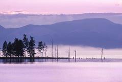 Arbres au lac Khuvsgul au coucher du soleil Image stock