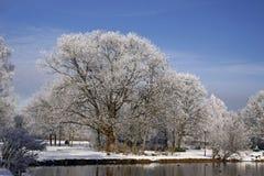 Arbres avec l'étang en hiver, basse-saxe, Allemagne Photo libre de droits
