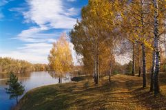 Arbres avec les feuilles jaunes sur le flanc de coteau par la rivière contre un ciel bleu un jour ensoleillé Autumn Landscape image libre de droits