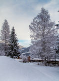 Arbres bloqués par la neige en Autriche Photo stock