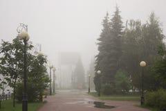 Arbres brumeux en parc Photos stock