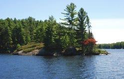 Arbres clairsemés sur une petite île de roche sur le lac en été Photos libres de droits