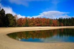 arbres colorés de lames d'automne Photographie stock libre de droits