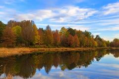 Arbres colorés par automne au lac Photographie stock libre de droits