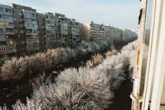 Arbres congelés, Bucarest, Roumanie images stock