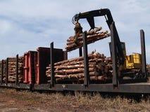 Arbres coupés de chargement sur un Railcar Photos stock