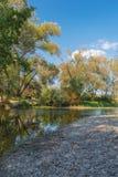 Arbres couverts de feuilles d'automne par la rivière Photographie stock libre de droits