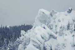 arbres couverts de neige dans les montagnes images stock