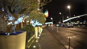 Arbres décorés dans des récipients le long de trottoir, illumination, vacances d'hiver banque de vidéos