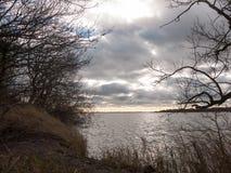 arbres déprimés d'océan de l'eau de baie d'hiver d'automne de croisement de ciel Photos libres de droits