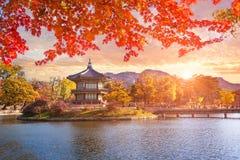 Arbres d'érable avec un lac au palais de gyeongbokgung, Séoul, Ko du sud Photo stock