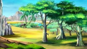 Arbres d'acacia en Afrique Vue de jour Image stock