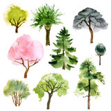Arbres d'aquarelle réglés illustration stock