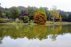 Arbres d'automne autour de lac Photographie stock libre de droits