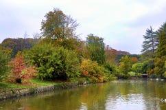 Arbres d'automne autour de lac Image stock