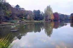 Arbres d'automne autour de lac Arbres de chute reflétés dans le lac Image libre de droits