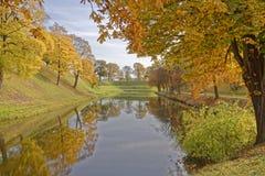 Arbres d'automne dans le copenhague image stock