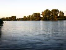 Arbres d'automne ou d'été sur le côté de rivière photos stock