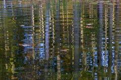 Arbres d'automne se reflétant dans un étang - Ontario, Canada Photo libre de droits