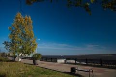 Arbres d'automne sur la côte d'une rivière en parc Images stock