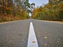 Arbres d'automne sur la route latérale image stock
