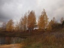 Arbres d'automne sur le rivage d'un lac de forêt contre un ciel orageux Photo libre de droits