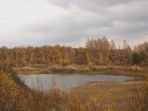 Arbres d'automne sur le rivage d'un lac de forêt contre un ciel orageux Photographie stock