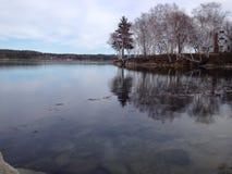 Arbres d'hiver dans la baie Photo libre de droits