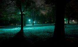 Arbres d'hiver et lumière bleu-vert sur la neige Photo libre de droits