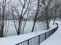 Arbres d'hiver se tenant prêt la rivière Image libre de droits
