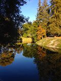 Arbres dans l'automne Photos libres de droits