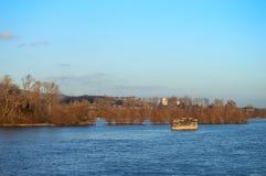 Arbres dans l'eau de rivière image libre de droits