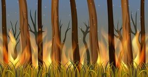 Arbres dans la forêt sur le feu illustration stock
