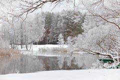 Arbres dans la neige et le lac janvier Photos stock