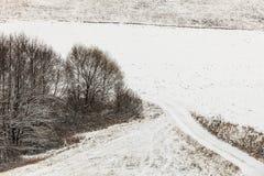 Arbres dans le domaine couvert par la neige Paysage de l'hiver images libres de droits