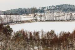 Arbres dans le domaine couvert par la neige Paysage de l'hiver photographie stock