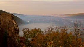 Arbres dans un brouillard sur la montagne clips vidéos