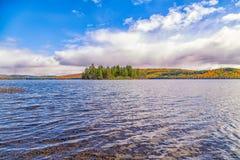 Arbres de chute avec le lac Photo stock
