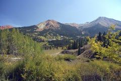 Arbres de Colorfull dans les montagnes automnales photographie stock libre de droits