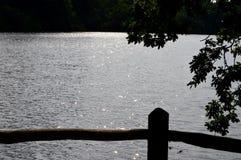 Arbres de coucher du soleil de plage de rivière de l'eau de réflexion de bord de la mer Images libres de droits