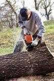 Arbres de coupe de jeune homme utilisant une tronçonneuse électrique Photo libre de droits