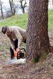 Arbres de coupe de vieil homme utilisant une tronçonneuse électrique Images stock