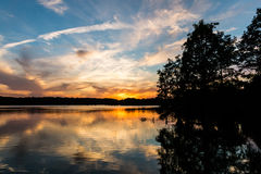 Arbres de Cypress chauve au coucher du soleil au lac courtaud Photographie stock libre de droits