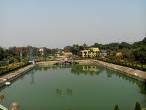 Arbres de dslr d'upview de lac de l'eau de parc Photographie stock libre de droits