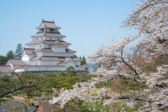 Arbres de fleurs de cerisier en parc de château de Tsuruga Photos stock