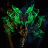 Arbres de fond de fumée images libres de droits