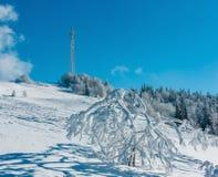 Arbres de givrage de hoar d'hiver, tour et congères MOIS carpathien photo libre de droits