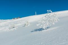 Arbres de givrage de hoar d'hiver, tour et MOU carpathien de congères photographie stock