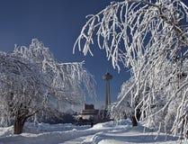 Arbres 2 de glace de givre de chutes du Niagara photos libres de droits
