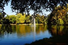 arbres de l'eau de réflexion d'automne de lac Images stock